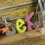 ck539-ss-eek